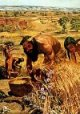 a history on the early forms of dog domestication How closely related are dogs and wolves  understanding dog domestication is a  to 45,000 years ago belonged to early forms of domesticated.